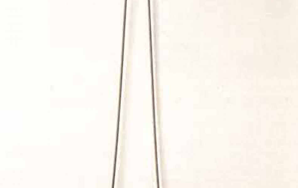 Tiempo pubescente 104 x 61 x 5 Piedra de Calatorao 1997